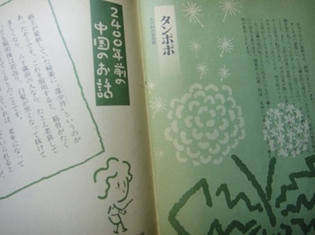 DSC03862.JPG